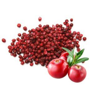 Брусника сублимированная целые ягоды 50 г